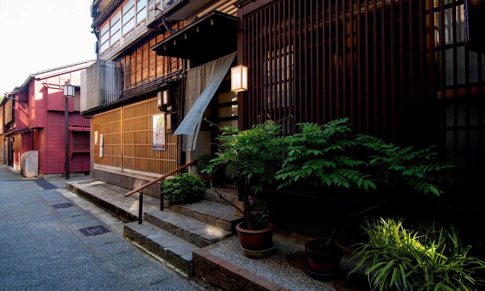 kazueya image 4